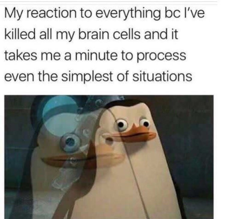 dank memes - Flightless bird - My reaction to everything bc I've killed all my brain cells and it takes me a minute to process even the simplest of situations
