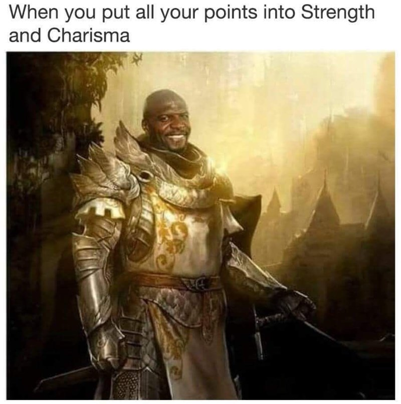 dank memes - Armour - When you put all your points into Strength and Charisma