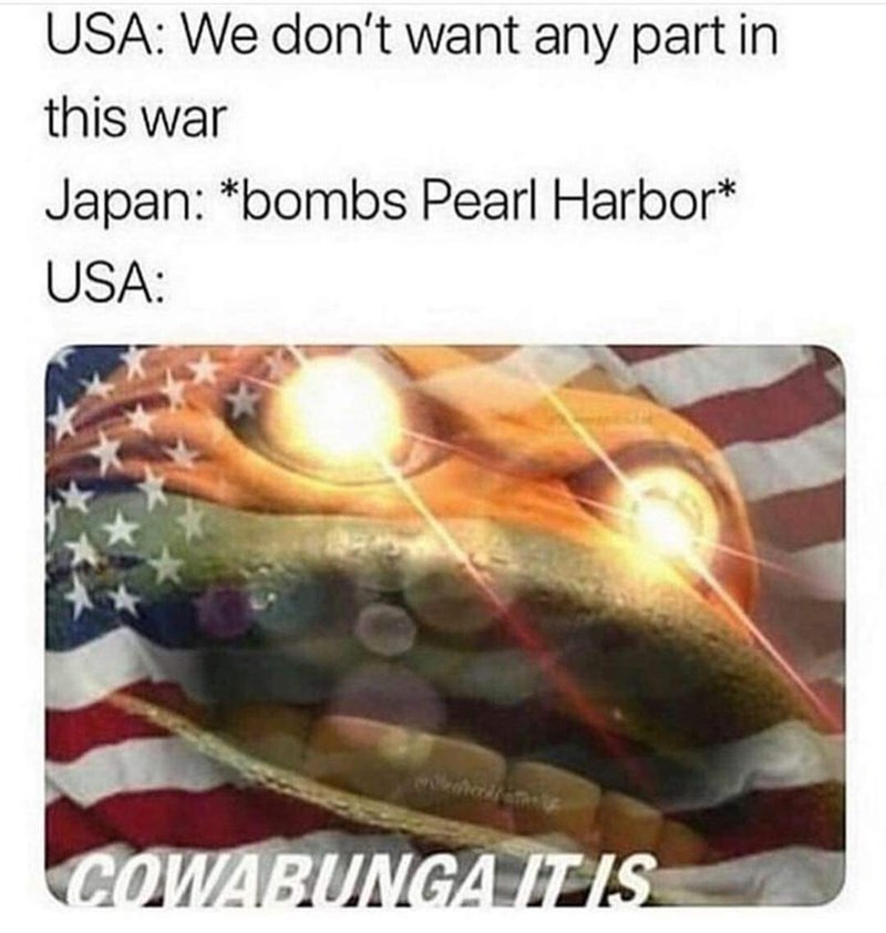 Text - USA: We don't want any part in this war Japan: *bombs Pearl Harbor* USA: COWABUNGA IT IS