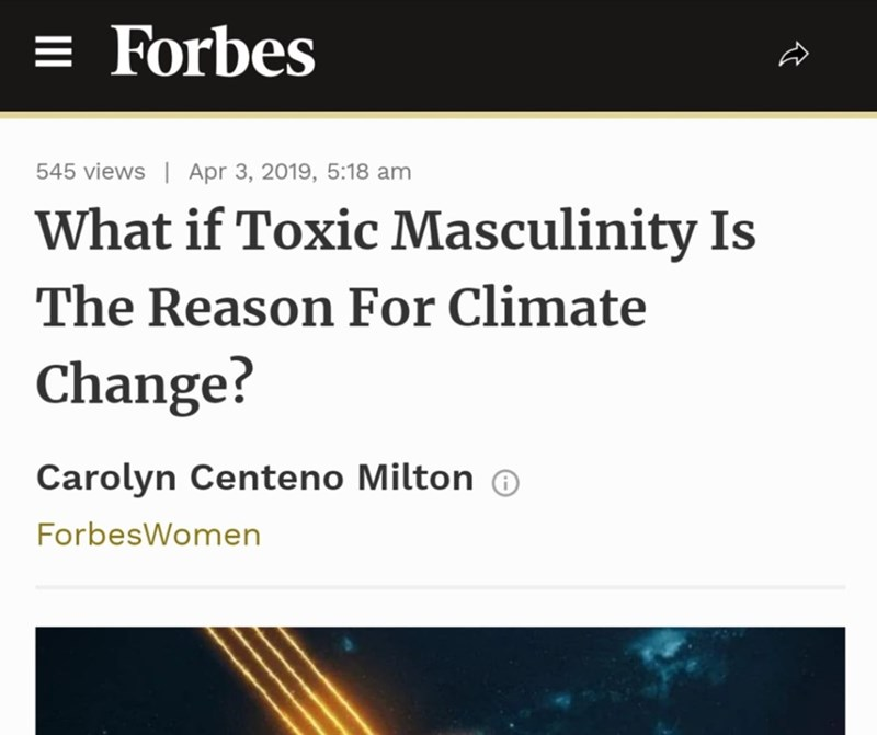 random meme about toxic masculinity the reason for climate change