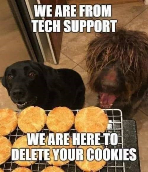 Mammal - WE ARE FROM TECH SUPPORT WEARE HERE TO DELETE YOUR COOKIES