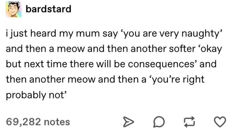Text - bardstard i just heard my mum say 'you are very naughty and then a meow and then another softer 'okay but next time there will be consequences' and then another meow and then a 'you're right probably not' 69,282 notes A