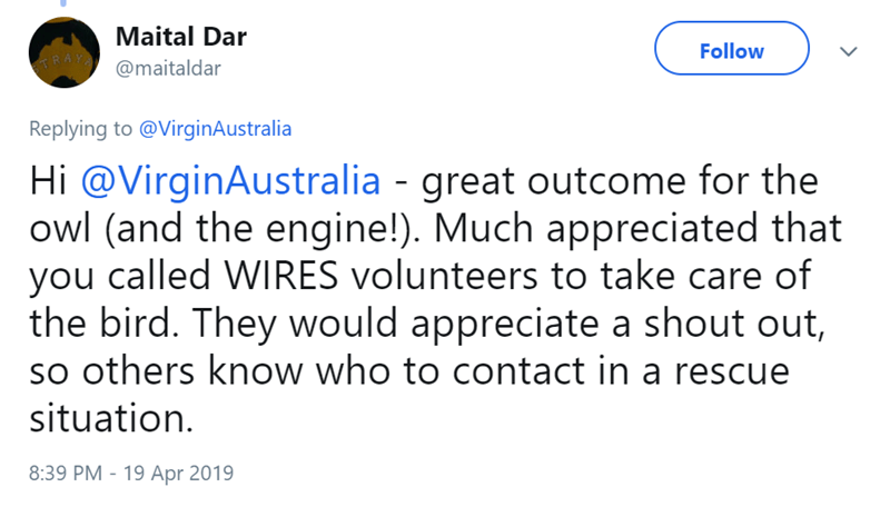 Text - Maital Dar RAYA@maitaldar Follow Replying to @VirginAustralia Hi @VirginAustralia - great outcome for the owl (and the engine!). Much appreciated that you called WIRES volunteers to take care of the bird. They would appreciate a shout out, so others know who to contact in a rescue situation. 8:39 PM - 19 Apr 2019