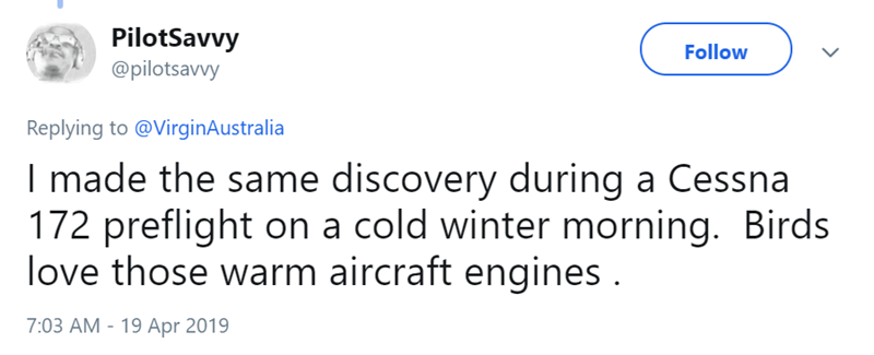 Text - PilotSavvy @pilotsavvy Follow Replying to @VirginAustralia I made the same discovery during a Cessna 172 preflight on a cold winter morning. Birds love those warm aircraft engines. 7:03 AM 19 Apr 2019