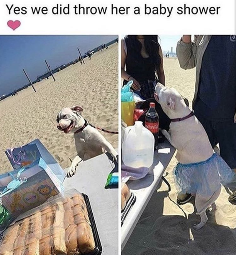 Photo caption - Yes we did throw her a baby shower baby