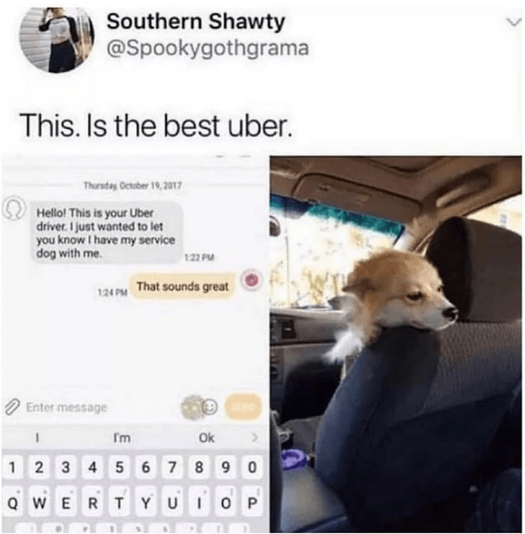 Text - Southern Shawty @Spookygothgrama This. Is the best uber. Thursday October 19,2017 Hello! This is your Uber driver. I just wanted to let you know I have my service dog with me 122 PM 124 PM That sounds great Enter message Im Ok 1 2 3 4 5 6 78 9 0 U I QWERTYUIO P