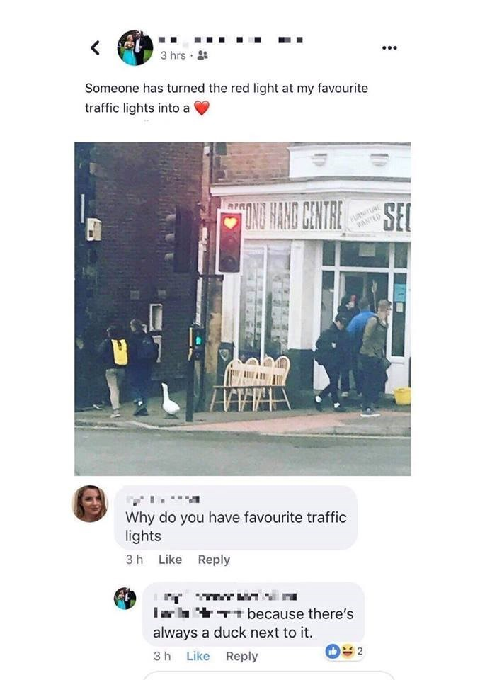 Text - 3 hrs Someone has turned the red light at my favourite traffic lights into a DN HAND CENTRE URNITUAE WANTED SEC Why do you have favourite traffic lights 3 h Like Reply Tbecause there's always a duck next to it. 3 h Like Reply 2 ST