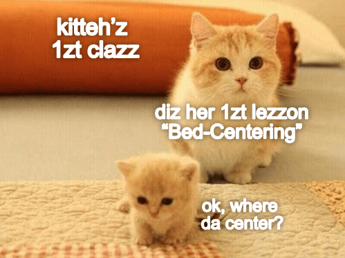 "Cat - kitteh'z 1zt clazz diz her 1zt lezon ""Bed-Centering"" ok, where da center?"
