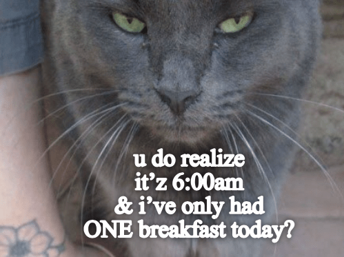 Cat - u do realize it'z 6:00am & i've only had ONE breakfast today?