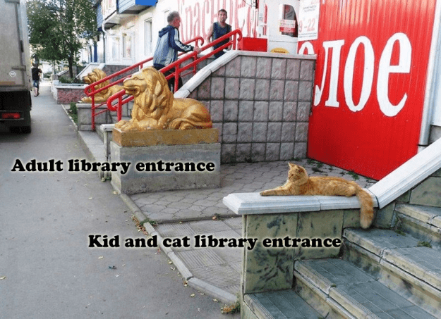 Tree - Adult library entrance Kid and cat library entrance