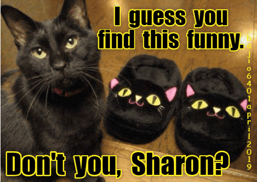Cat - U guess you find this funny. Don't you, Sharon? 040 PPI 2O10