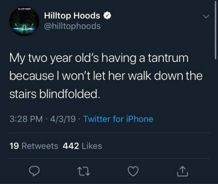 Text - Hilltop Hoods @hilltophoods My two year old's having a tantrum because I won't let her walk down the stairs blindfolded. 3:28 PM 4/3/19 Twitter for iPhone 19 Retweets 442 Likes