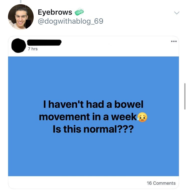 old people facebook - Text - Eyebrows @dogwithablog_69 7 hrs I haven't hada bowel movement in a week Is this normal??? 16 Comments