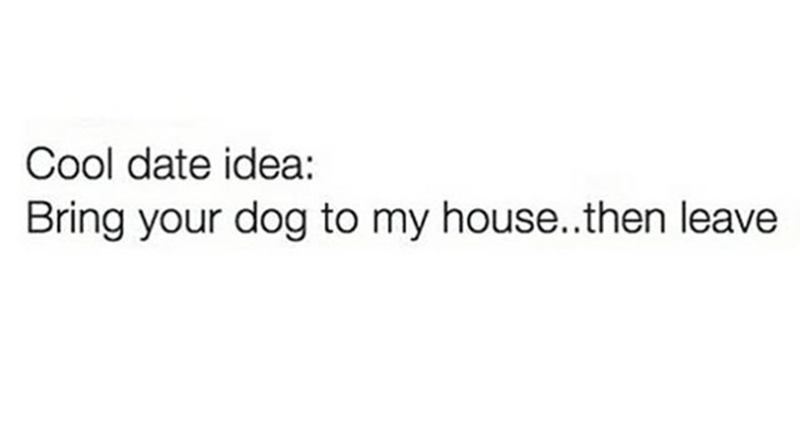 Text - Cool date idea: Bring your dog to my house..then leave