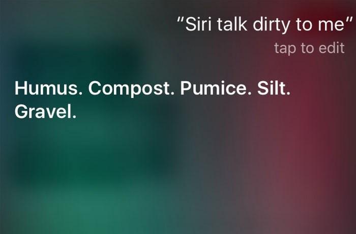 "Text - ""Siri talk dirty to me"" tap to edit Humus. Compost. Pumice. Silt. Gravel."