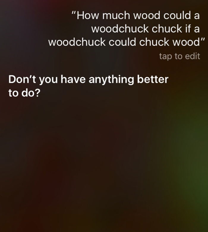 "Text - ""How much wood could a woodchuck chuck if a woodchuck could chuck wood"" tap to edit Don't you have anything better to do?"