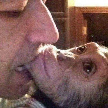 cursed_image - man biting monkeys chin