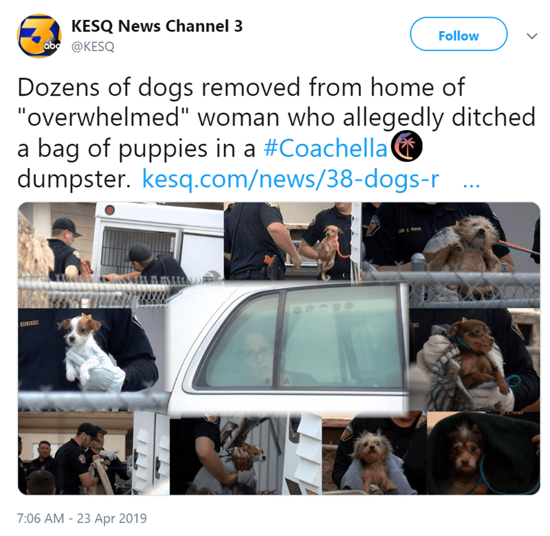 "Text - KESQ News Channel 3 ab@KESQ Follow Dozens of dogs removed from home of ""overwhelmed"" woman who allegedly ditched a bag of puppies in a #Coachella dumpster. kesq.com/news/38-dogs-r cOR C M 7:06 AM -23 Apr 2019"