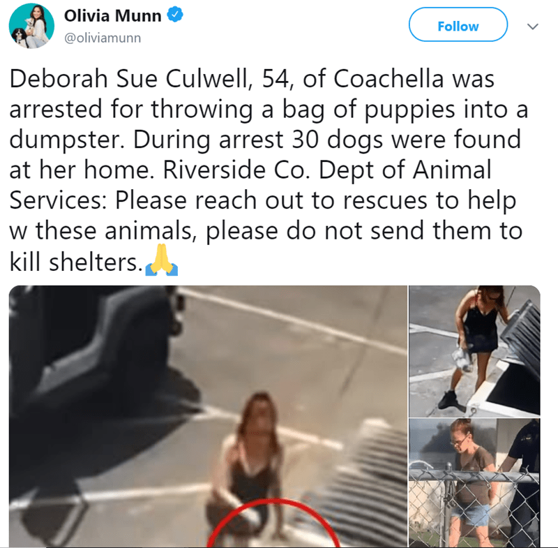 Olivia Munn @oliviamunn Follow LL Deborah Sue Culwell, 54, of Coachella was arrested for throwing a bag of puppies into a dumpster. During arrest 30 dogs were found at her home. Riverside Co. Dept of Animal Services: Please reach out to rescues to help w these animals, please do not send them to kill shelters.