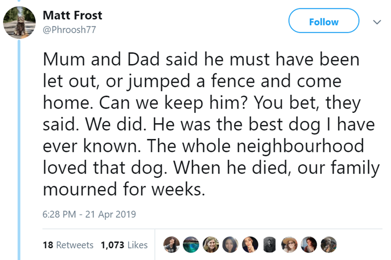 Text - Matt Frost Follow @Phroosh77 Mum and Dad said he must have been let out, or jumped a fence and come home. Can we keep him? You bet, they said. We did. He was the best dog I have ever known. The whole neighbourhood loved that dog. When he died, our family mourned for weeks. 6:28 PM 21 Apr 2019 18 Retweets 1,073 Likes