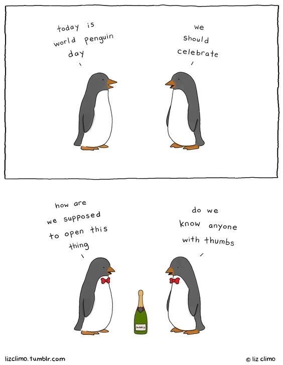 Bird - today is Penguin We Should world day celebrate how are do we we supposed know anyone to open this thing with thumbs y lizclimo. tumblr.com liz climo