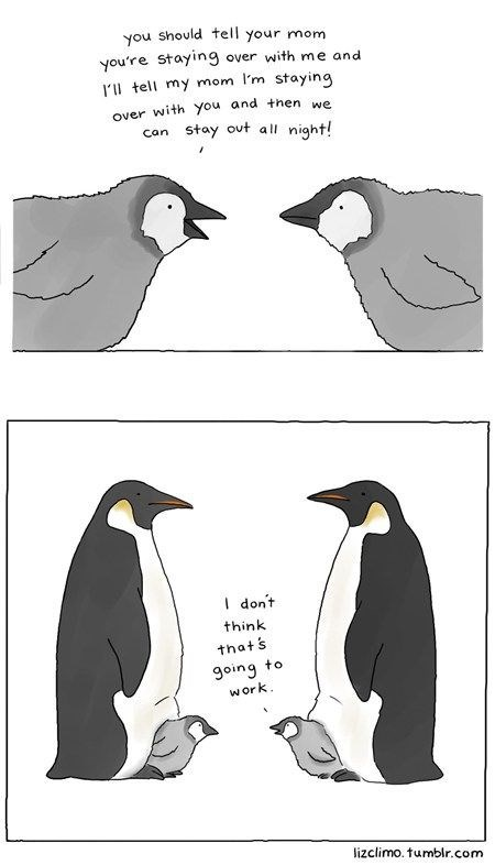 Bird - you should tell your mom you're stayng over with me and r'll tell my mom l'm staying over with you and then e can Stay out all night! I dont think thats going to work lizclimo. tumblr.com