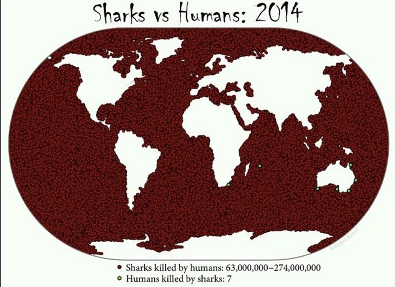 """Funny map titled, Sharks vs. humans: 2014"""" above an image of a map indicating how many sharks have been killed by humans and how many humans have been killed by sharks"""