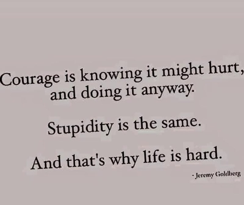 """Funny text that reads, """"Courage is knowing it might hurt, and doing it anyway. Stupidity is the same. And that's why life is hard"""""""