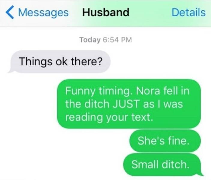 Text - ( Messages Husband Details Today 6:54 PM Things ok there? Funny timing. Nora fell in the ditch JUST as I was reading your text. She's fine. Small ditch.