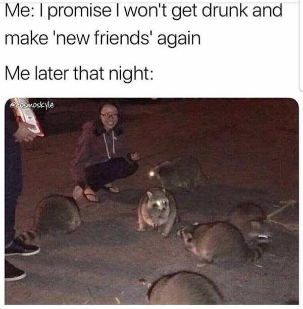 alcohol meme - Adaptation - Me: I promise I won't get drunk and make 'new friends' again Me later that night: 203moskyle