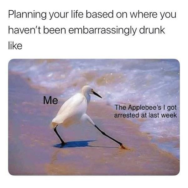 alcohol meme - Text - Planning your life based on where you haven't been embarrassingly drunk like Me The Applebee's I got arrested at last week