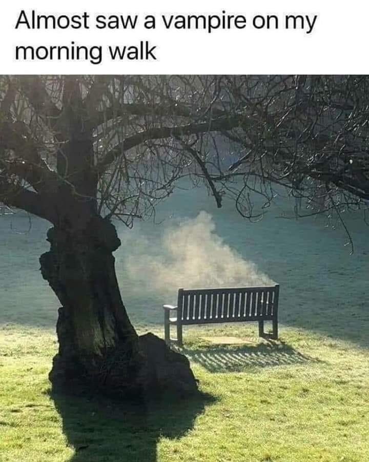 dank memes - Nature - Almost saw a vampire on my morning walk