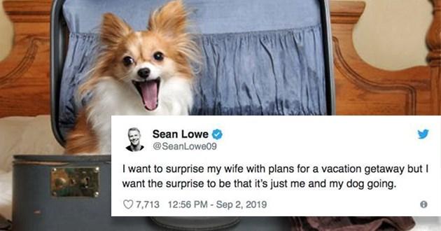 doggo dog tweets relatable