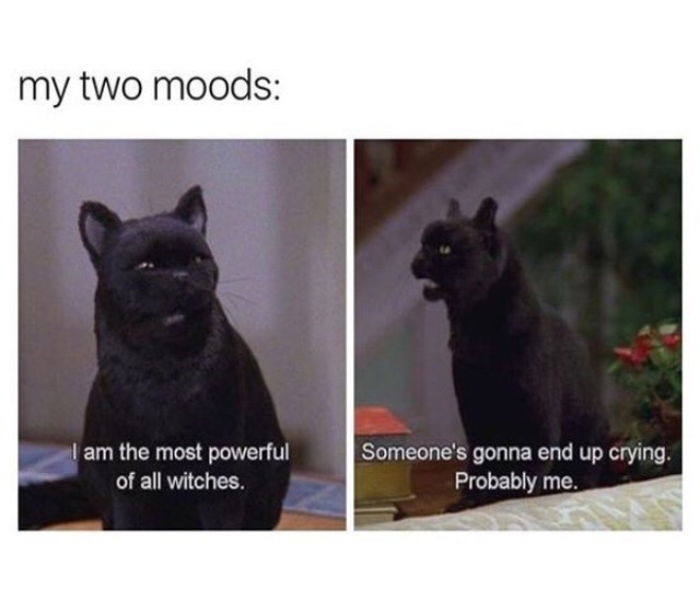 Cat - my two moods: I am the most powerful of all witches. Someone's gonna end up crying. Probably me.