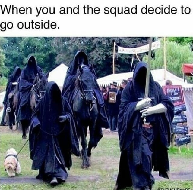 Adaptation - When you and the squad decide to go outside. GTHEUCUENADE