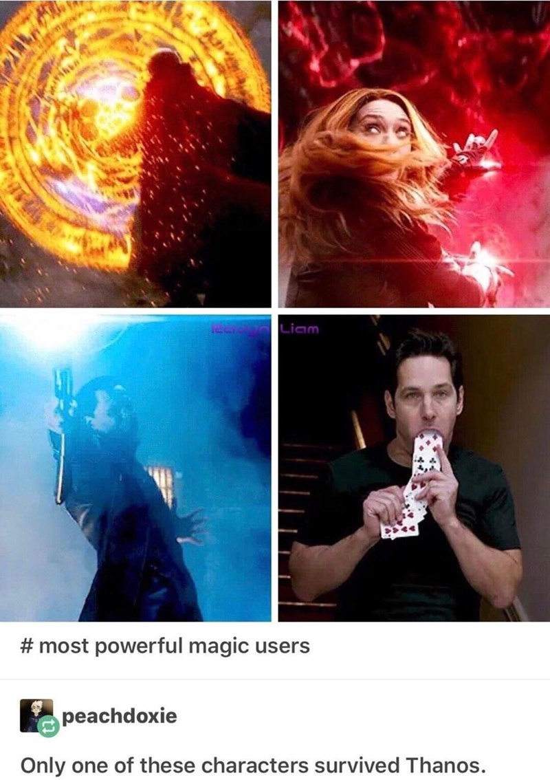 meme - Performance - Liam #most powerful magic users peachdoxie Only one of these characters survived Thanos.