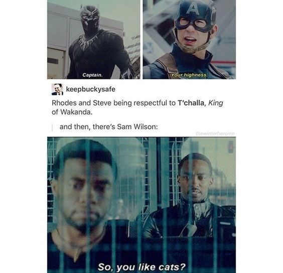 meme - Text - Vour highness Captain. keepbuckysafe Rhodes and Steve being respectful to T'challa, King of Wakanda and then, there's Sam Wilson: hewintorherovin So, you like cats?