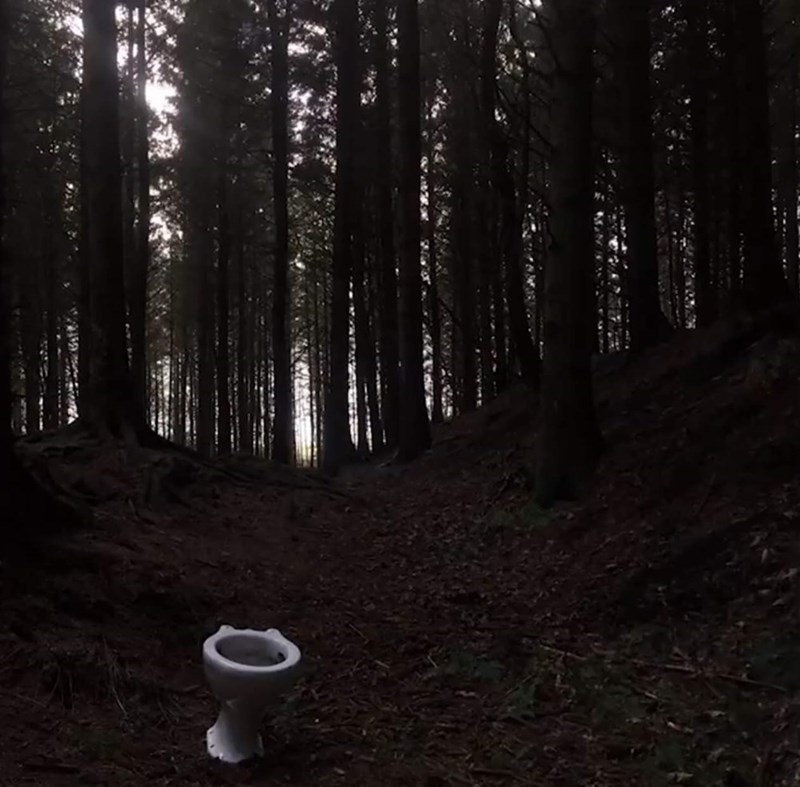 cursed_images - toilet in middle of the forest