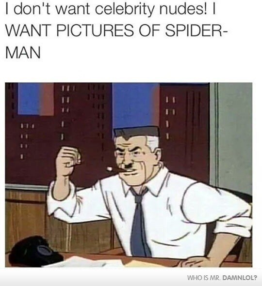 meme - Cartoon - I don't want celebrity nudes! I WANT PICTURES OF SPIDER- MAN WHO IS MR. DAMNLOL?
