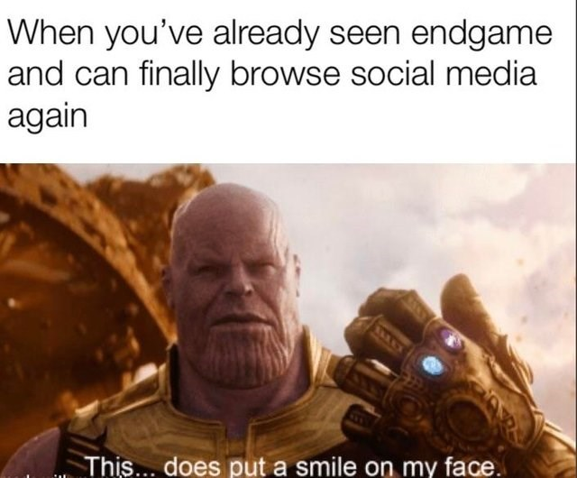 meme - Human - When you've already seen endgame and can finally browse social media again This... does put a smile on my face.