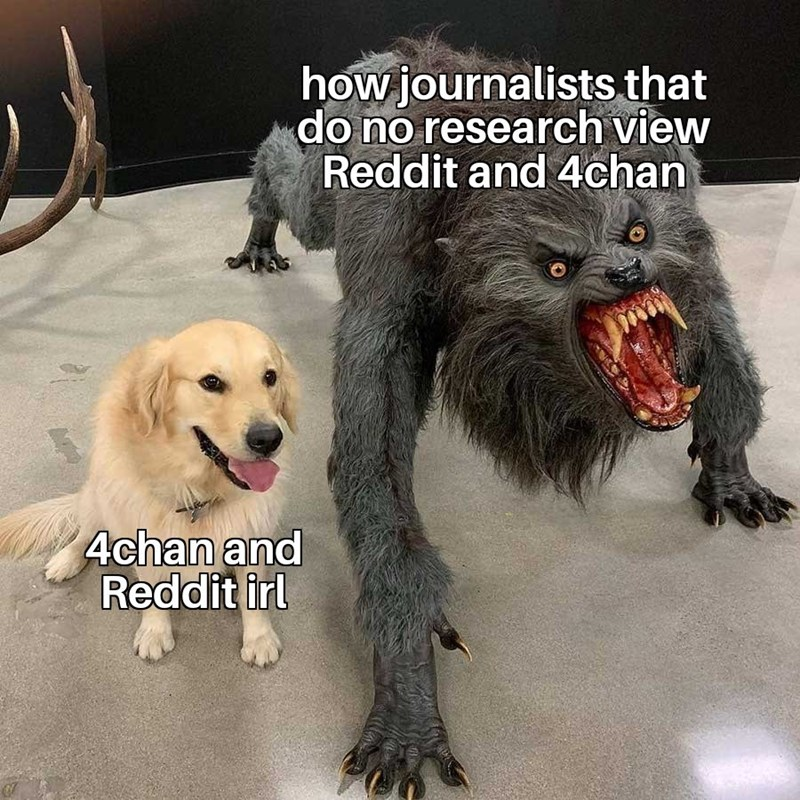 dank memes - Dog - how journalists that do no research view Reddit and 4chan 4chan and Reddit irl