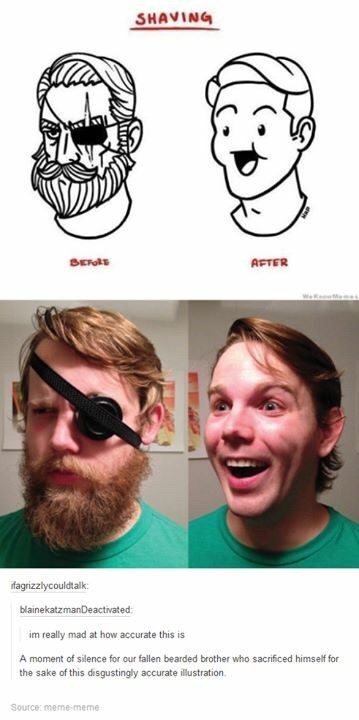 meme - Face - SHAVING Ets AFTER WekeMem ifagrizzlycouldtalk blainekatzmanDeactivated im really mad at how accurate this is A moment of silence for our fallen bearded brother who sacrificed himself for the sake of this disgustingly accurate illustration. Source: meme-meme