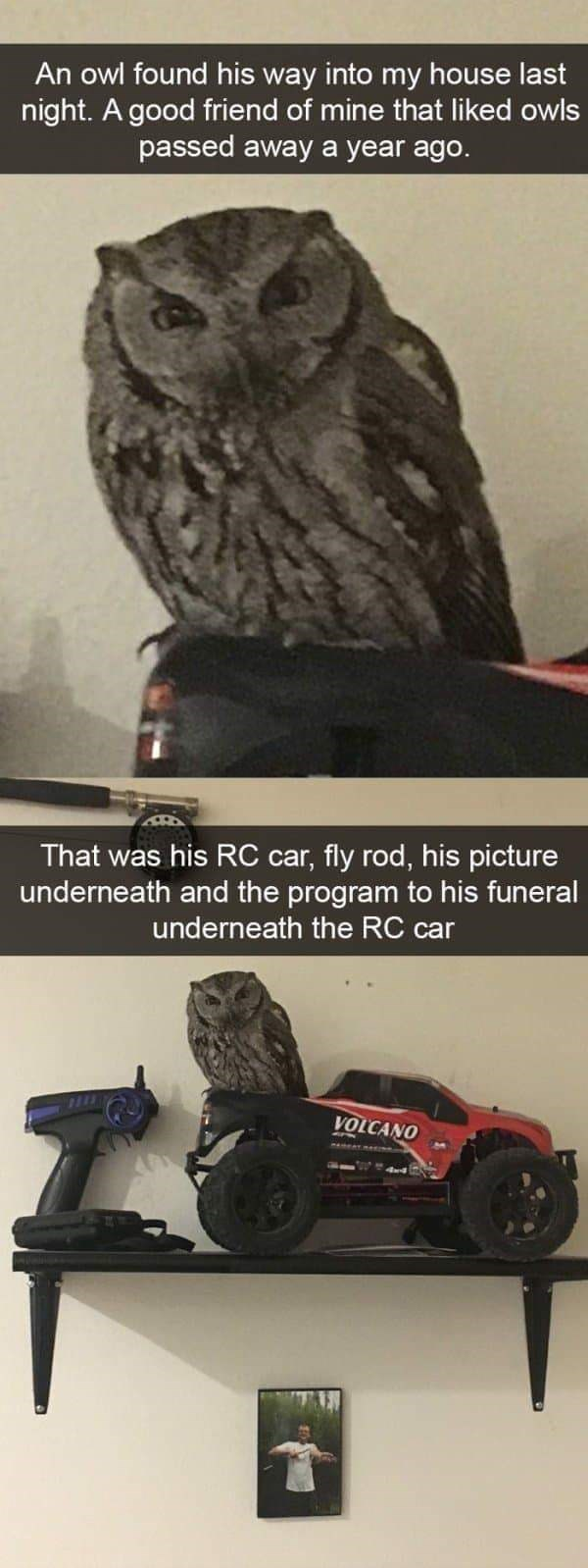 Tire - An owl found his way into my house last night. A good friend of mine that liked owls passed away a year ago. That was his RC car, fly rod, his pic underneath and the program to his funeral underneath the RC car VOLCANO