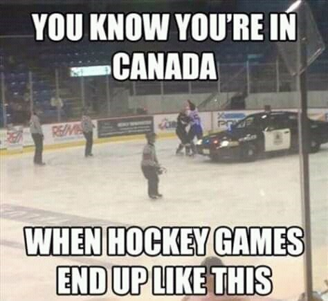"""Funny photo of a police car on a hockey rink where some players are fighting; caption reads, """"You know you're in Canada when hockey games end up like this"""""""
