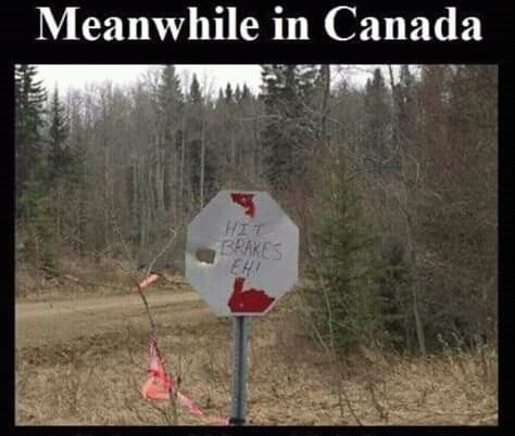 canada meme - Tree - Meanwhile in Canada HIT BRAKES EH