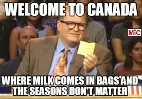 canada meme - Internet meme - WELCOME TO CANADA MiC WHERE MILKCOMES IN BAGSAND THE SEASONS DONT MATTER