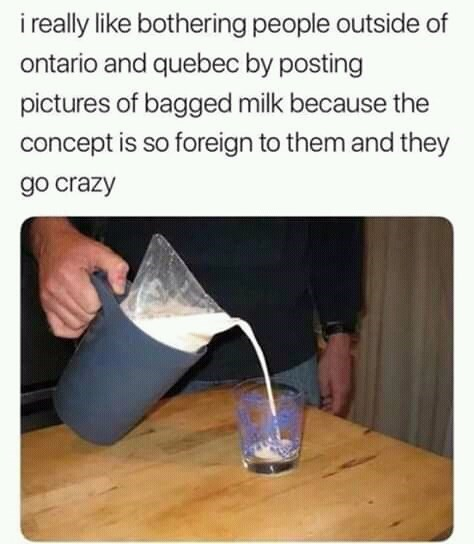 canada meme - Floor - i really like bothering people outside of ontario and quebec by posting pictures of bagged milk because the concept is so foreign to them and they go crazy