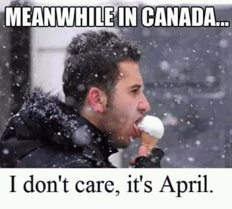 canada meme - Nose - MEANWHILE IN CANADA.. I don't care, it's April