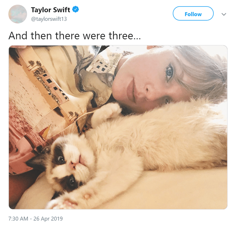 Nose - Taylor Swift Follow @taylorswift13 And then there were thre... 7:30 AM -26 Apr 2019