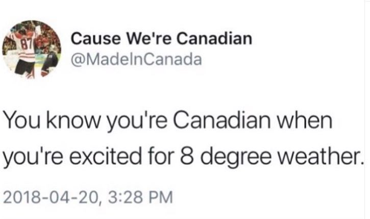 """Funny tweet that reads, """"You know you're Canadian when you're excited for eight-degree weather"""""""